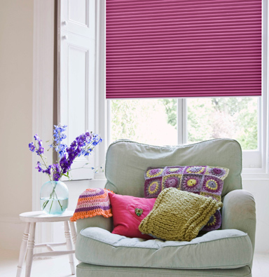 Pleated Amp Cellular Blind Rolashades